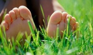 campo-verde-castilla